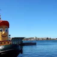 Halifax_Theodore_Tugboat__1369084500_142.176.91.195